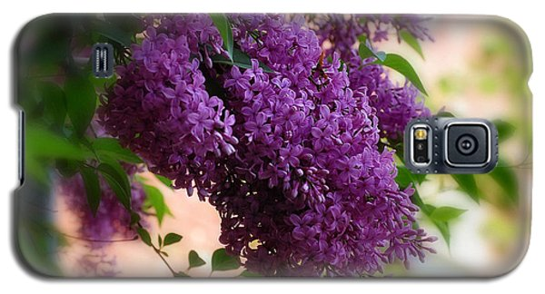 Galaxy S5 Case featuring the photograph Lilacs by Elaine Manley
