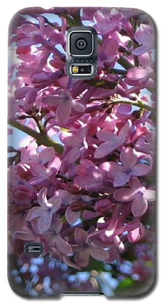 Galaxy S5 Case featuring the photograph Lilacs In Bloom 2 by Barbara Yearty