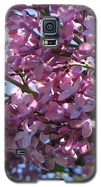 Lilacs In Bloom 2 Galaxy S5 Case