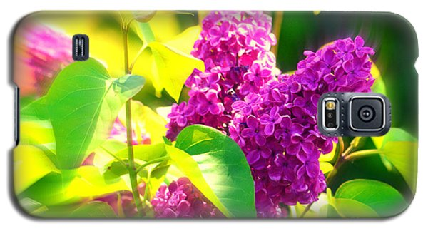 Galaxy S5 Case featuring the photograph Lilacs by Susanne Van Hulst