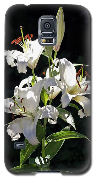 Lilies In The Sun Galaxy S5 Case