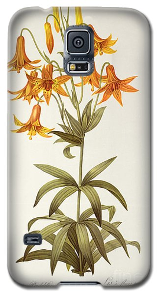 Lilium Penduliflorum Galaxy S5 Case by Pierre Joseph Redoute