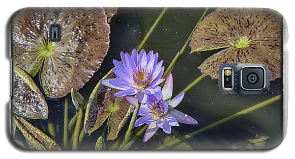 Lillies Galaxy S5 Case by R Thomas Berner