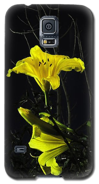 Lilly In The Evening Galaxy S5 Case by Charles Ables