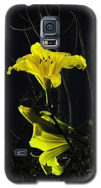 Galaxy S5 Case featuring the photograph Lilly In The Evening by Charles Ables