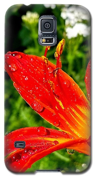 Lily And Raindrops Galaxy S5 Case