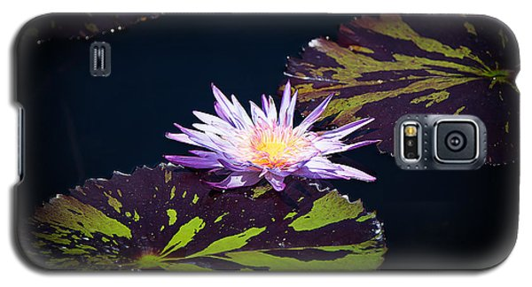 Lily Artistry Galaxy S5 Case