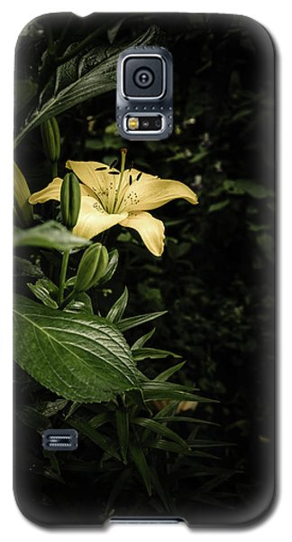 Galaxy S5 Case featuring the photograph Lily In The Garden Of Shadows by Marco Oliveira