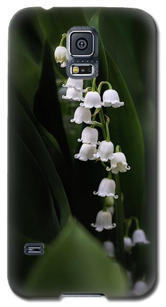 Lily Galaxy S5 Case - Lily Of The Valley by Tom Mc Nemar