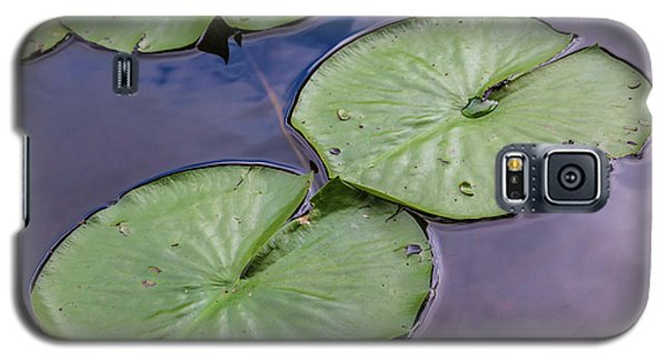 Lily Pad Reflections Galaxy S5 Case