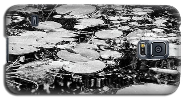 Lily Pads, Black And White Galaxy S5 Case