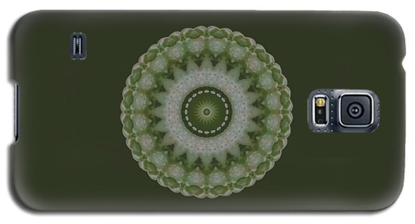 Lily Plaid Galaxy S5 Case