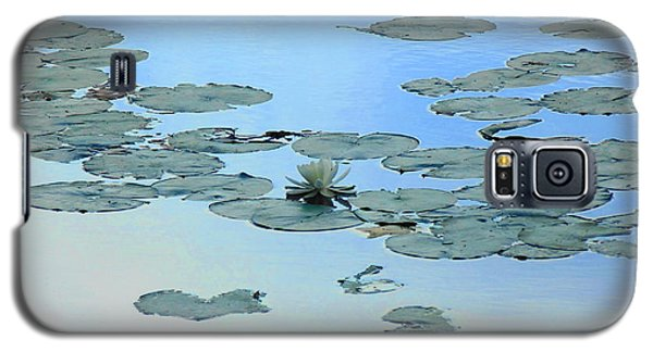 Lily Pond Galaxy S5 Case by Daun Soden-Greene