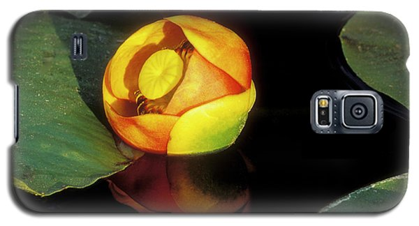 Galaxy S5 Case featuring the photograph Lily Reflection by Sandra Bronstein