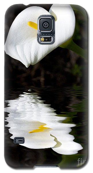 Lily Reflection Galaxy S5 Case by Avalon Fine Art Photography
