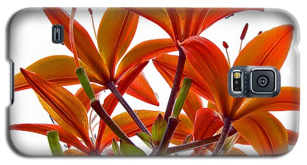 Lily Galaxy S5 Case by Robert Knight