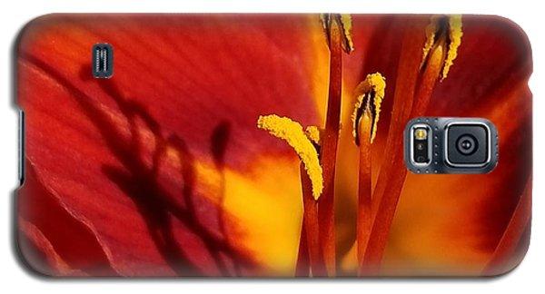 Lily Shadows Galaxy S5 Case