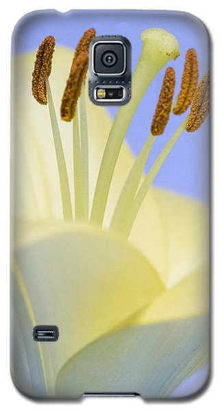 Lily Stamens  Galaxy S5 Case