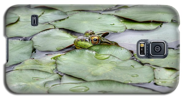 Lily The Frog Galaxy S5 Case