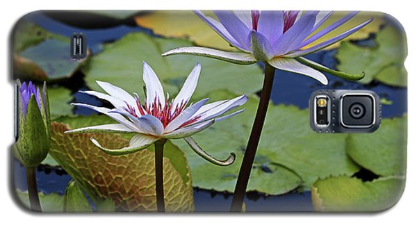 Galaxy S5 Case featuring the photograph Lily Trio by Judy Vincent