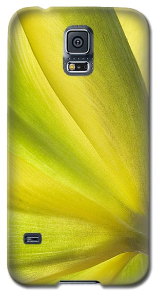 Lime Tulip Galaxy S5 Case