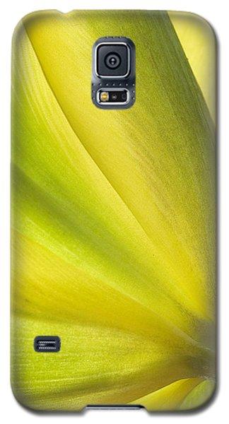 Lime Tulip Galaxy S5 Case