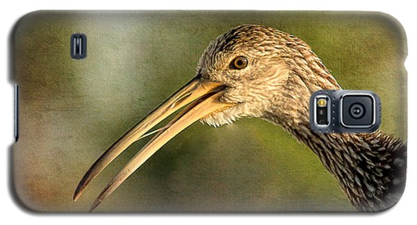 Limpkin 1 Galaxy S5 Case