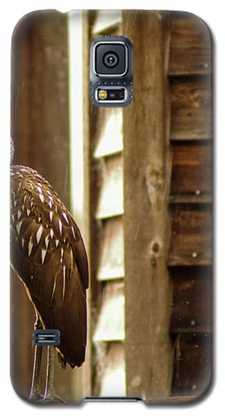 Limpkin Galaxy S5 Case