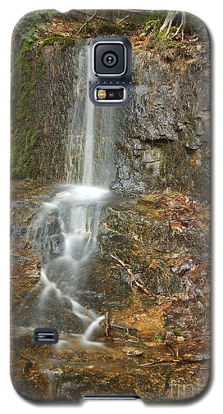 Lincoln Woods - White Mountains New Hampshire Usa Galaxy S5 Case