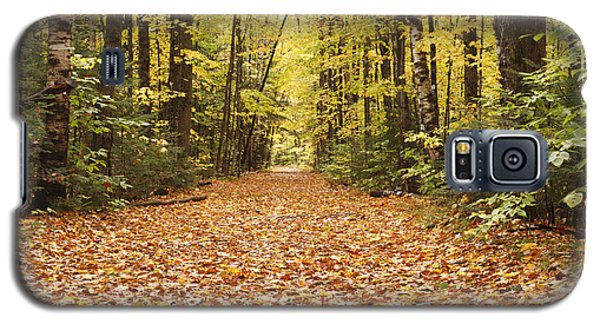 Lincoln Woods Trail  - White Mountains New Hampshire Galaxy S5 Case