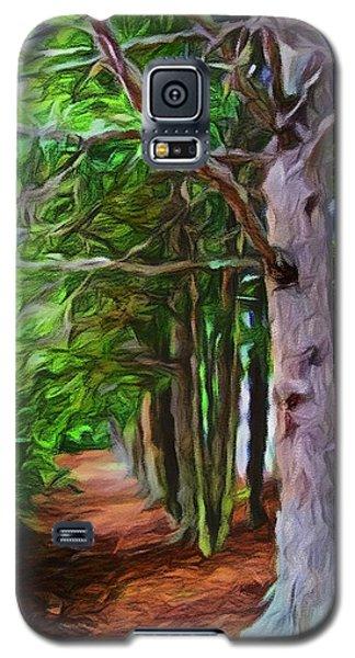 Lincoln's Path Galaxy S5 Case