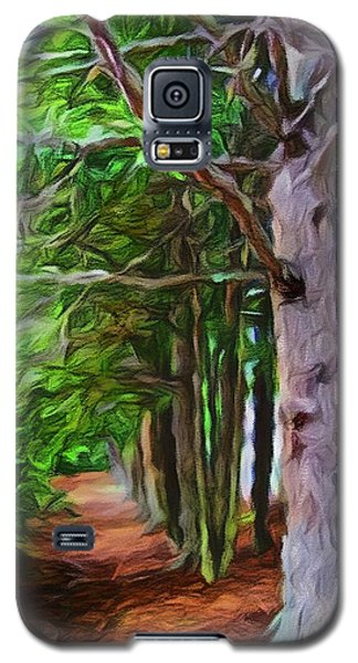 Lincoln's Path Galaxy S5 Case