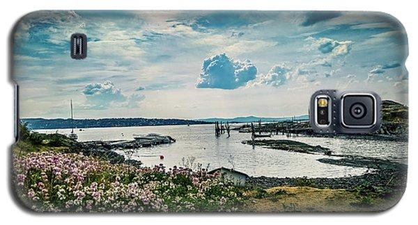 Lindoya Galaxy S5 Case