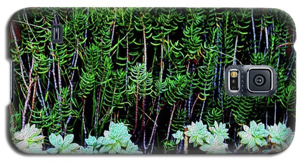 Line Of Succulents And Red Fence Galaxy S5 Case