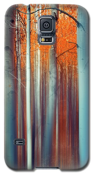Lines Of Autumn Galaxy S5 Case