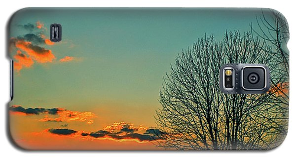 Galaxy S5 Case featuring the photograph Linvilla Sunset by Sandy Moulder