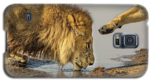 Lion Affection Galaxy S5 Case