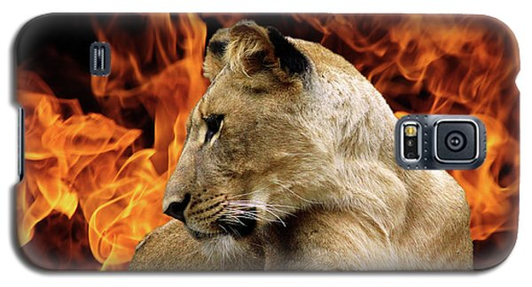 Lion And Fire Galaxy S5 Case