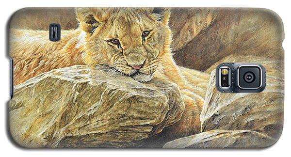 Lion Cub Study Galaxy S5 Case