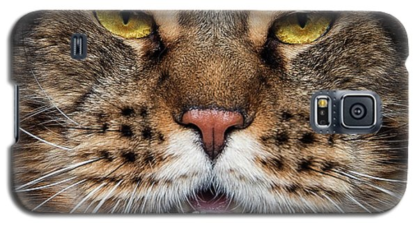 Tiger Face. Galaxy S5 Case