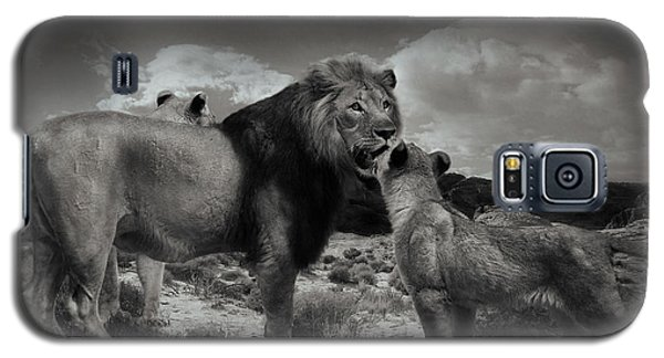 Galaxy S5 Case featuring the photograph Lion Family by Christine Sponchia