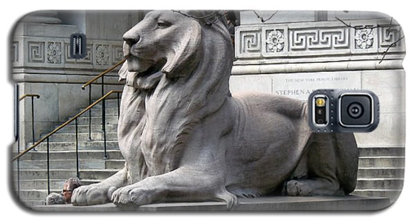 Galaxy S5 Case featuring the photograph Lion Guards Literature by Helen Haw