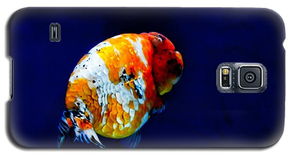 Lion Head Goldfish 2 Galaxy S5 Case