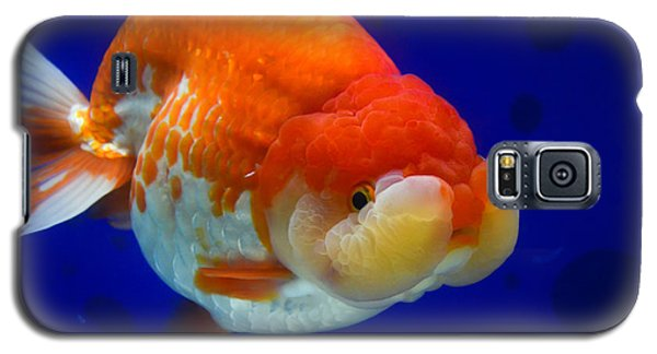 Lion Head Goldfish 4 Galaxy S5 Case