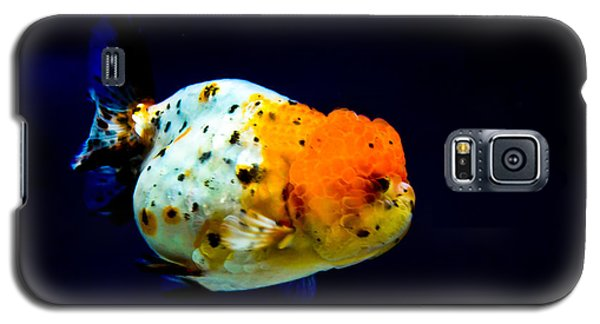 Lion Head Goldfish Galaxy S5 Case