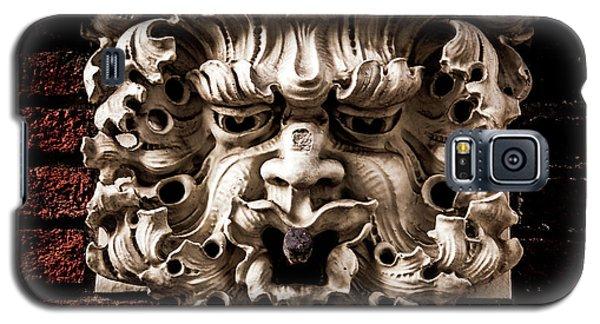 Lion Head Galaxy S5 Case
