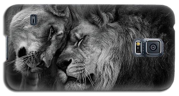 Lion In Love 2 Galaxy S5 Case