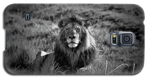 Galaxy S5 Case featuring the photograph Lion King by Karen Lewis