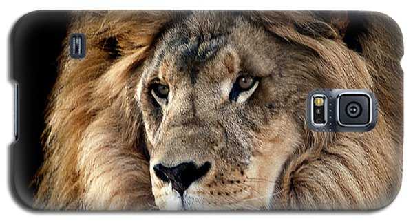 Lion King Of The Jungle 2 Galaxy S5 Case