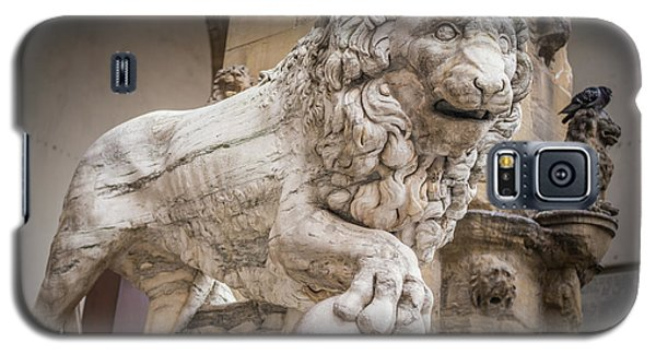 Lion On The Porch Galaxy S5 Case